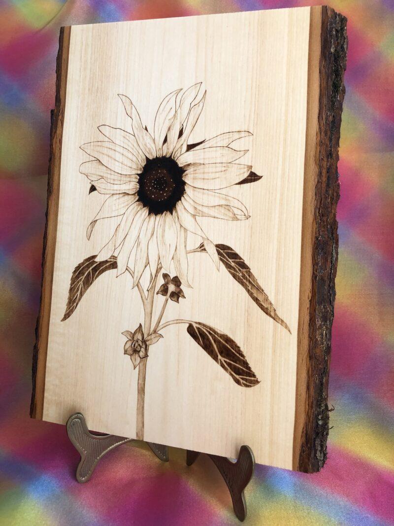 sunflower-wood-pyrography